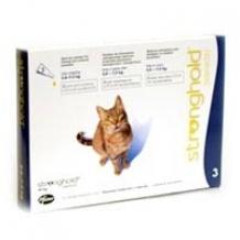 goedkope vlooienpipetten pipetten tegen vlooien voor de kat. Black Bedroom Furniture Sets. Home Design Ideas