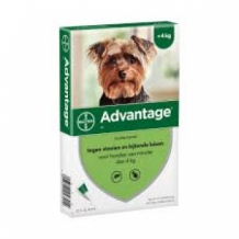 Advantage hond 40 mg 4 pipetten